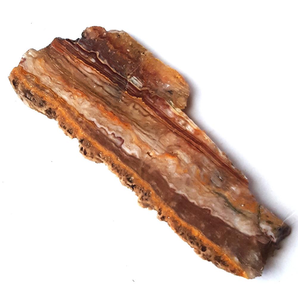 #4878 Bacon Opal / Candy Stripe Opal
