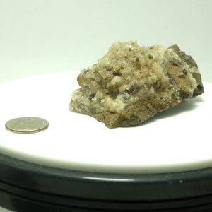 4022-Calcite on Dolomite, Rensselaer, Indiana