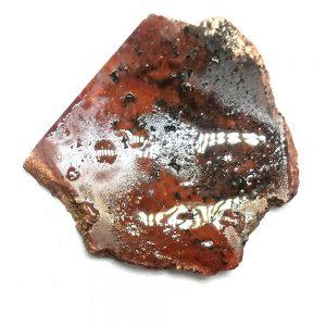 6771- Dinosaur Gem Bone