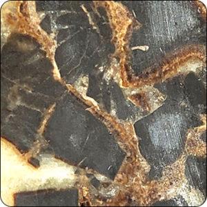 "Septarian Concretions / ""Dragon Eggs"" / Septarian Nodules"