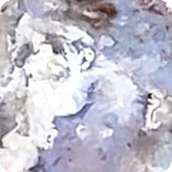 Purple Cloud Agate with Opal